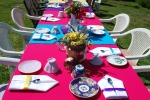 Tablescape D